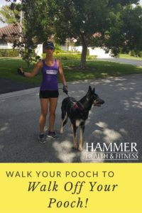exercise with your pet on national dog day